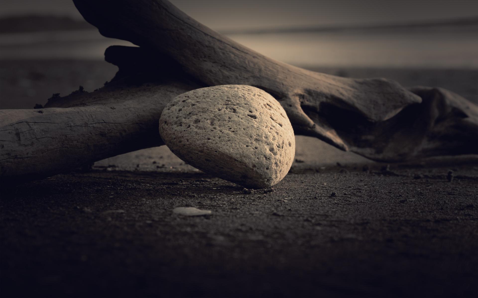 Rock Beach, beach, branch, wood, later