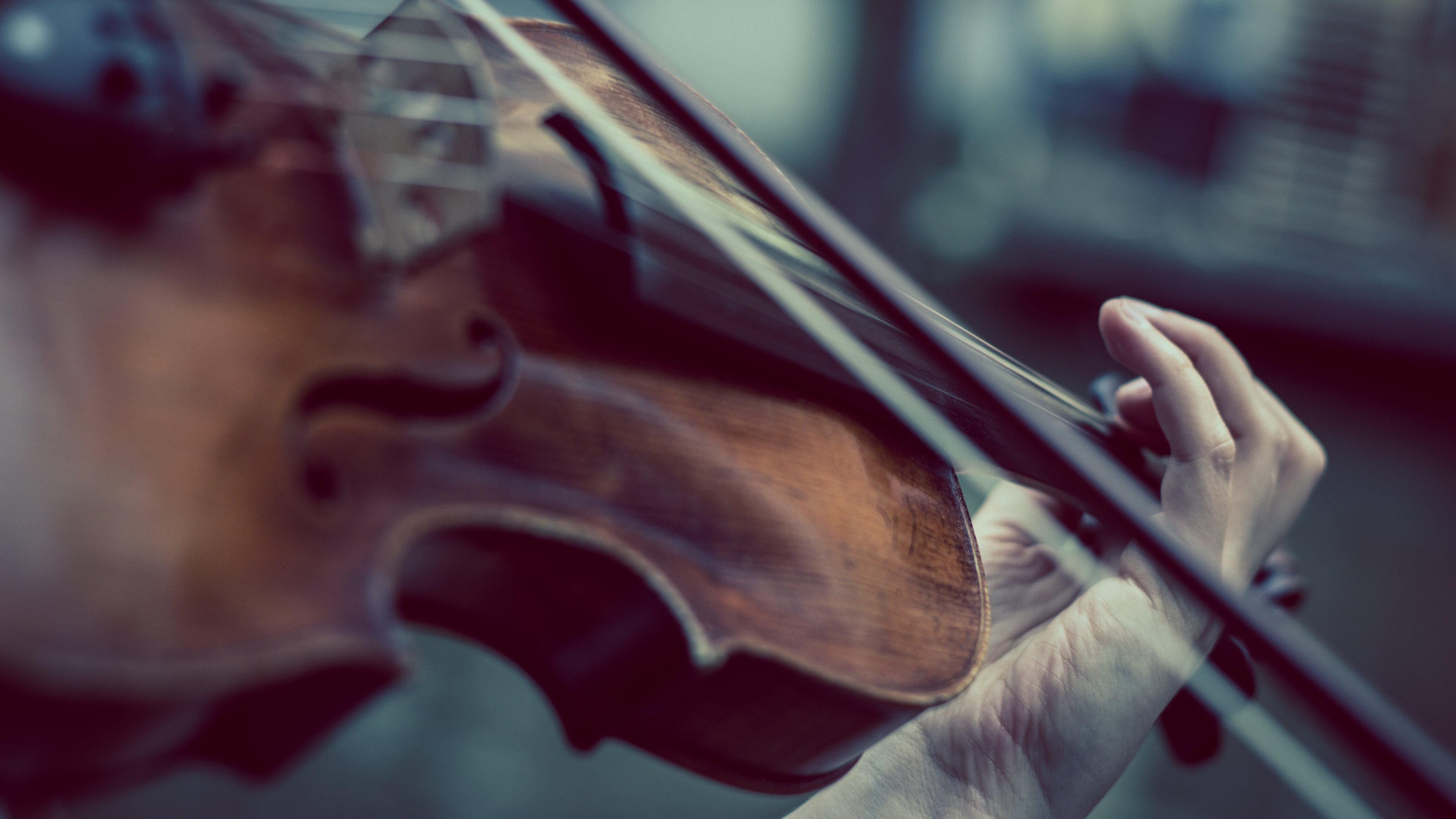 Playing violinist, violin, music, photographing, hands