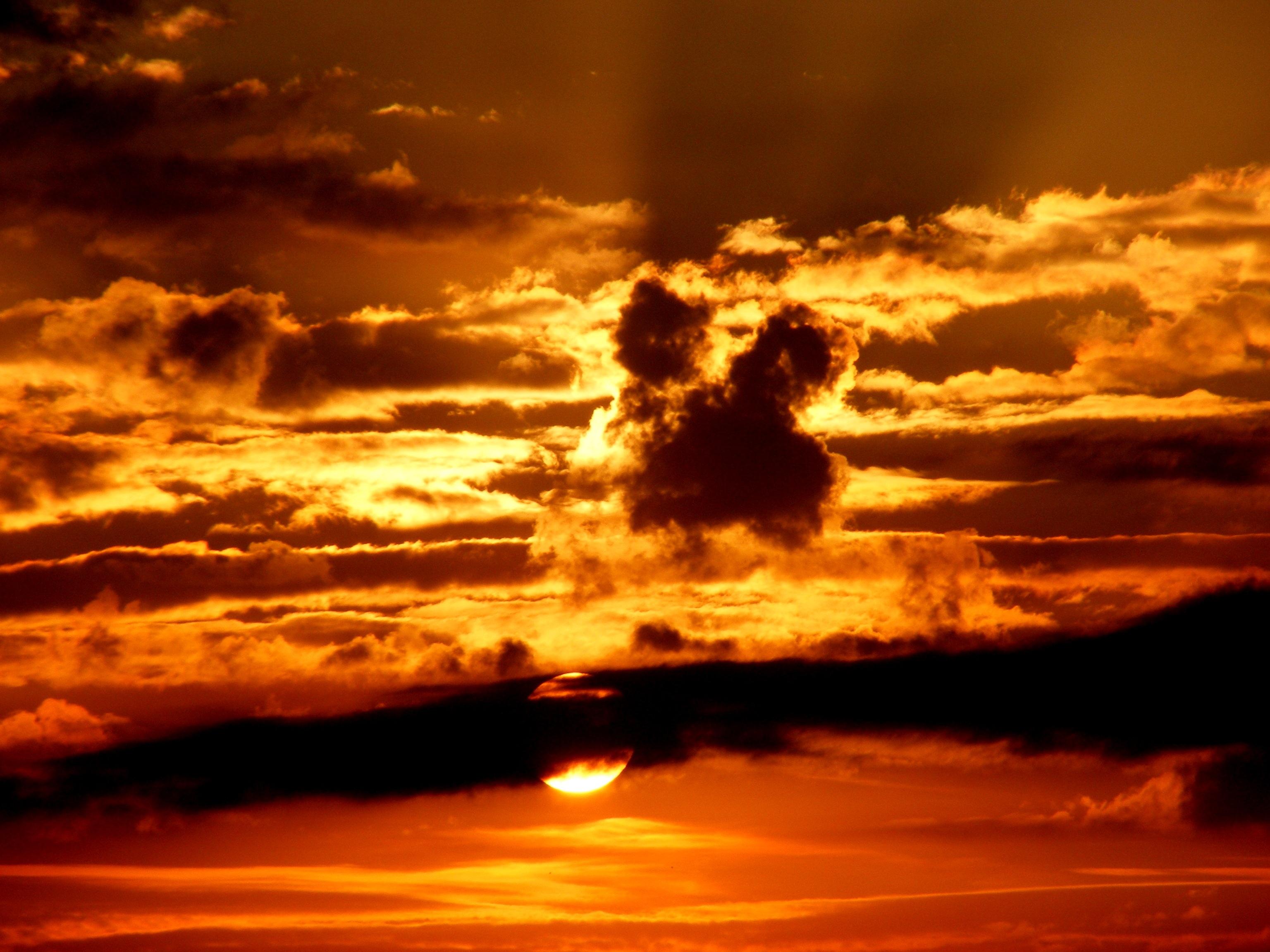 Sunset, gold, orange, sun, sunlight, evening