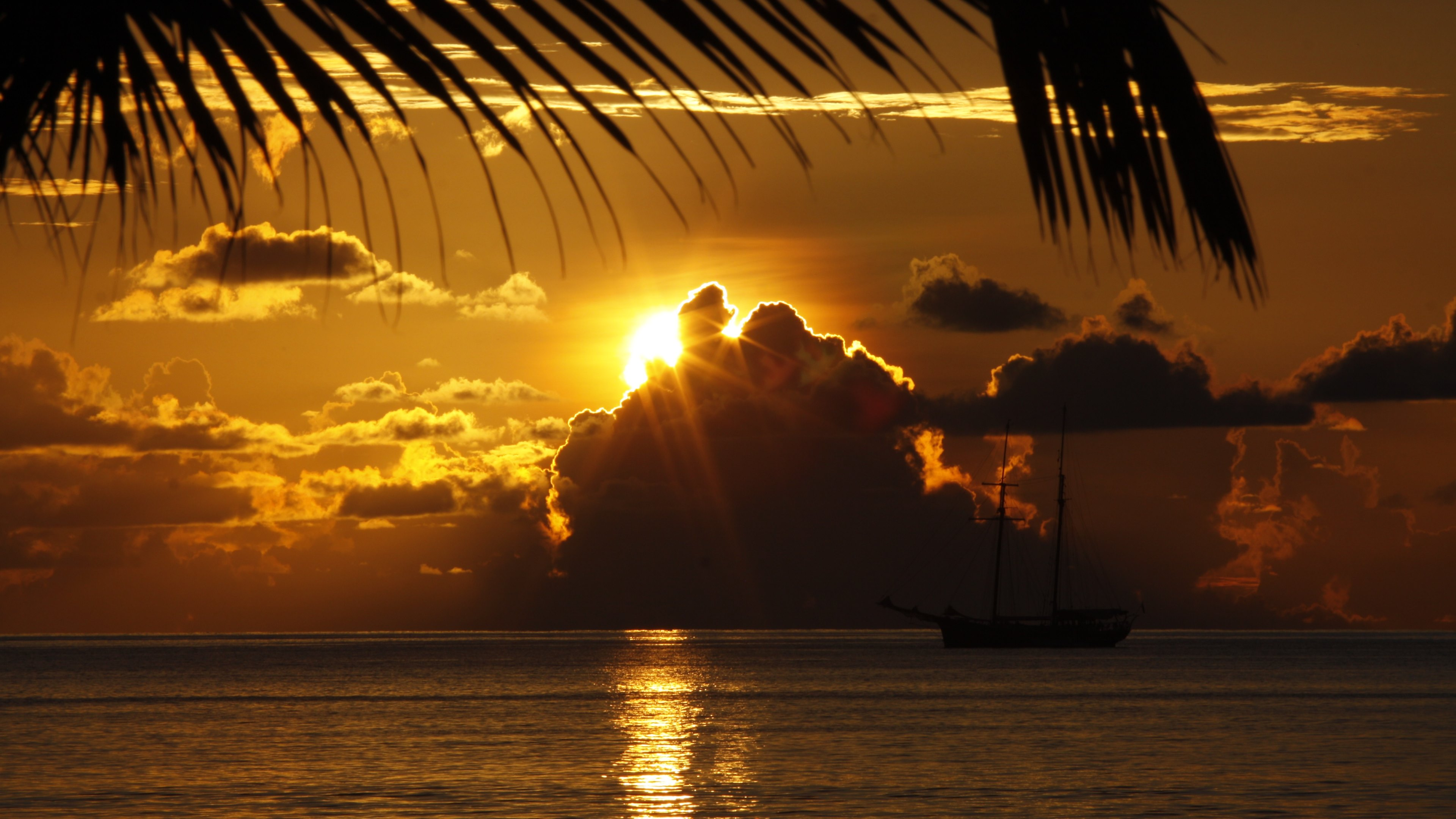 The Dream Travel, paradise, nature, beach, palm trees, sunset, sunset, sailboat, boat, sea