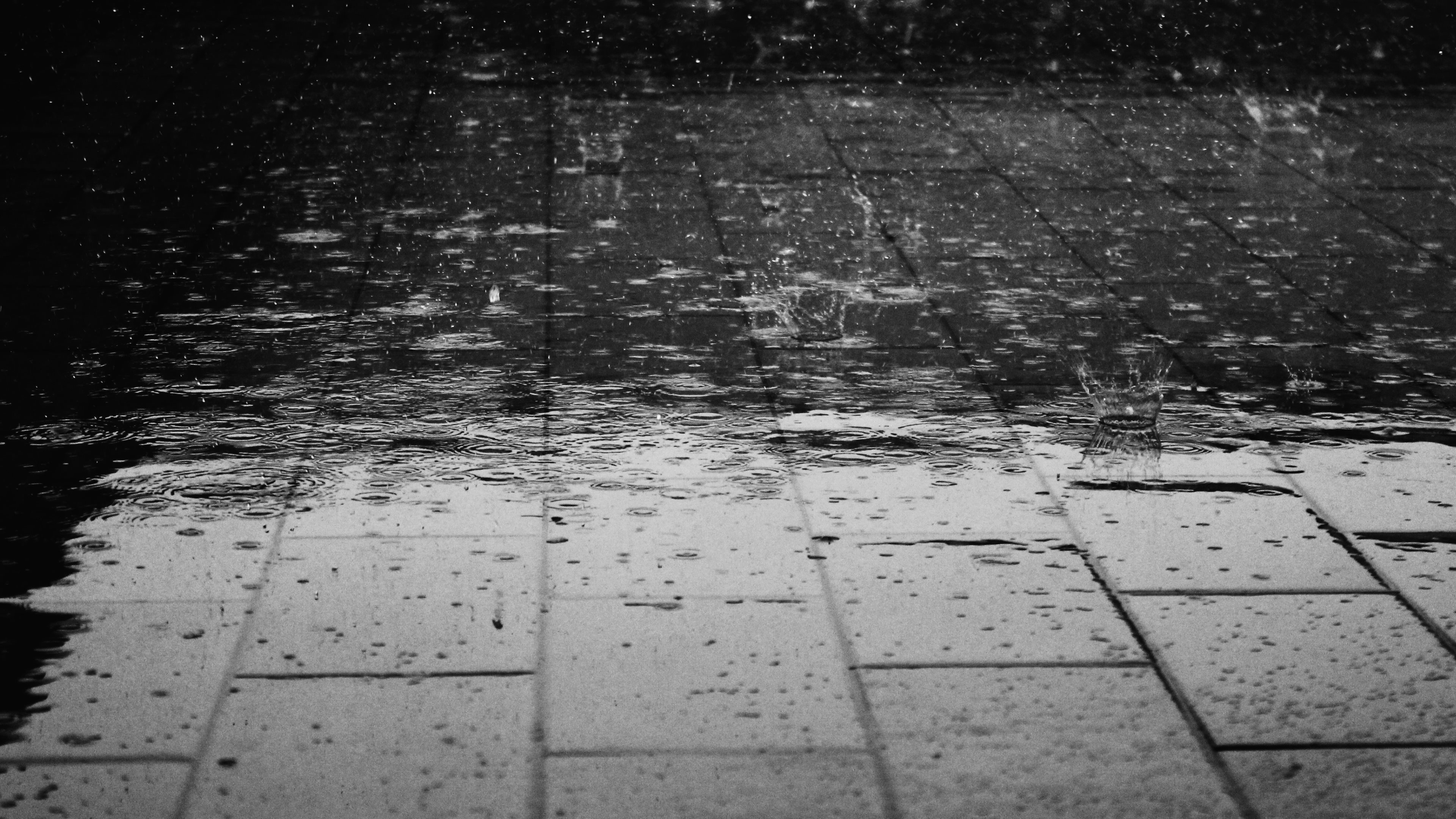 Rainy day, drops, drops on the floor, water, wet, white and black