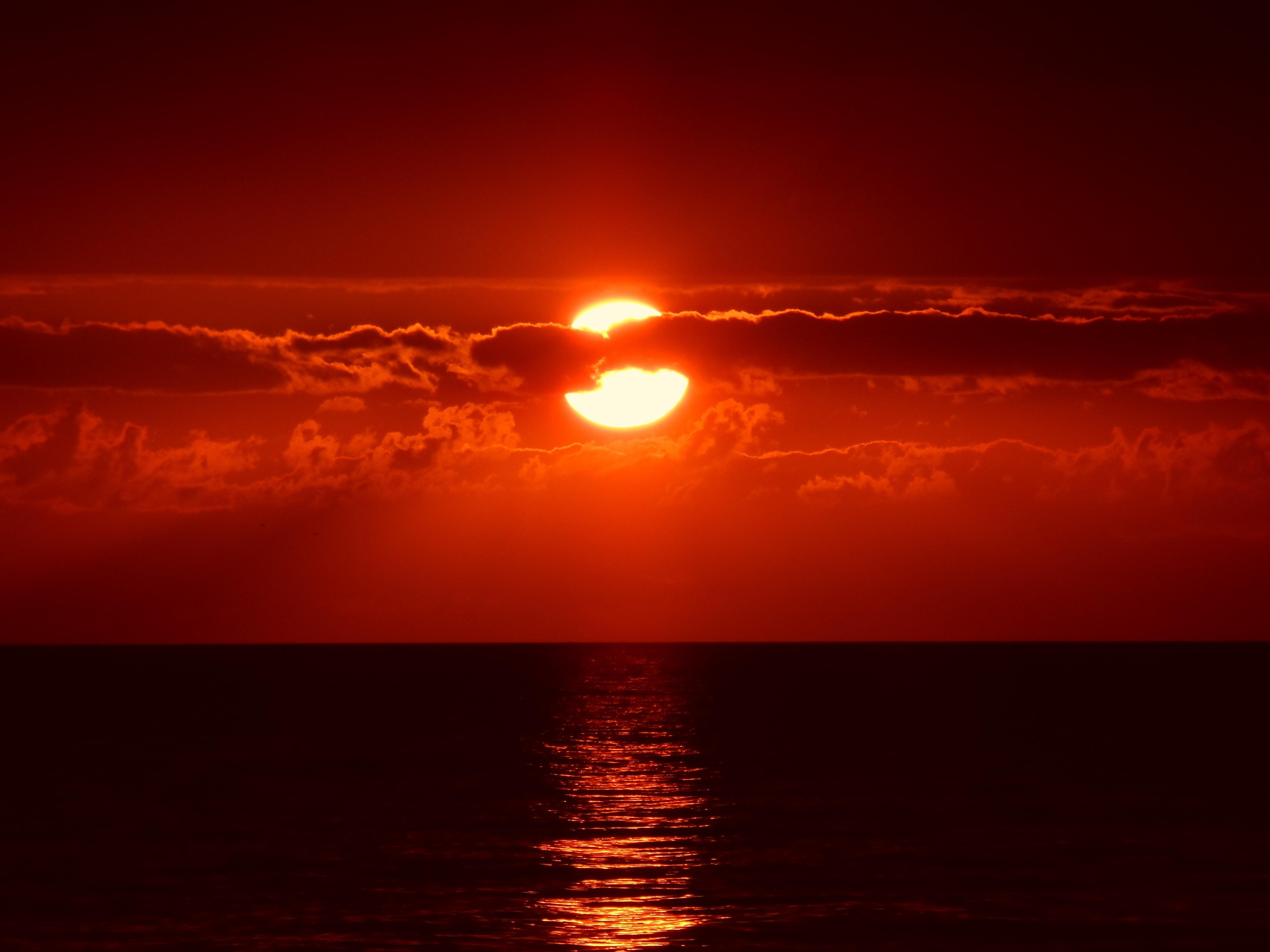 Sunset on the beach, sunset, beach, palm trees, sun, red, orange, sea, water, vegetation