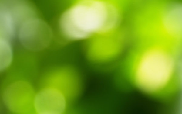 Mood by leoatelier, green, focus, out of focus, lights, circles
