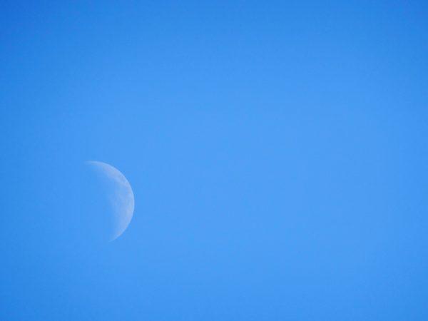 Daytime moon, blue sky, white moon, day, blue sky