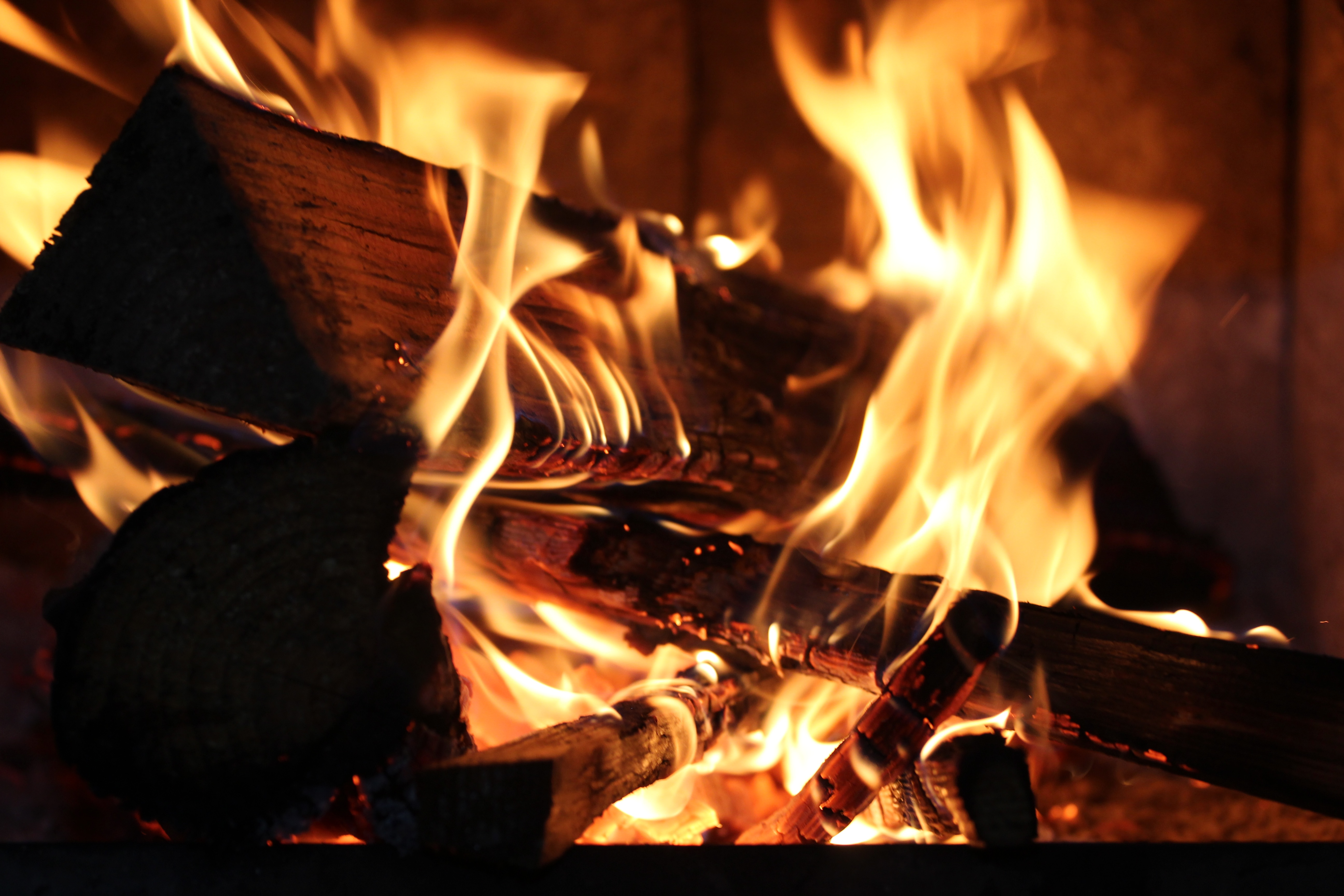 Campfire, fire, flames, mesmerizing, sacred fire, firewood, logs, campfire
