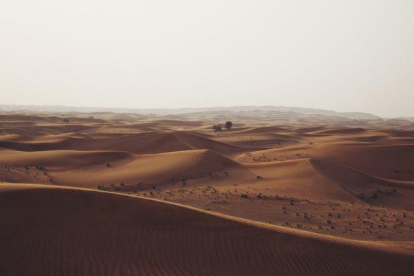 Dunes in the desert, dunes, sand, heat, desert, dry, hot