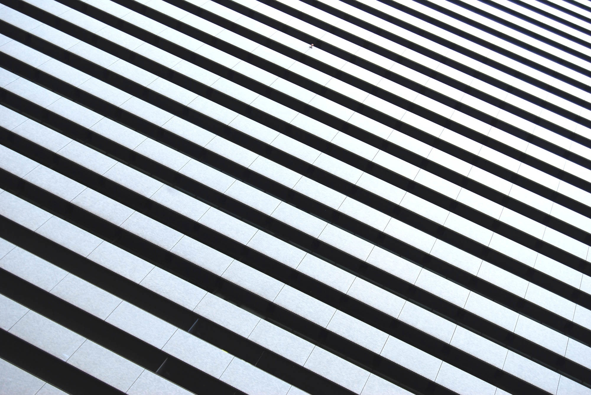 Architectural pattern, stripes, black and white, sun, effect, pattern, architecture