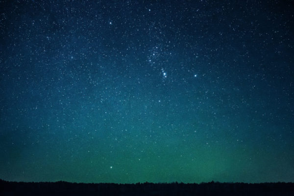 Constellation, stars, sky, night sky, trees, silhouettes, immensity, star cluster, galaxy, Milky Way