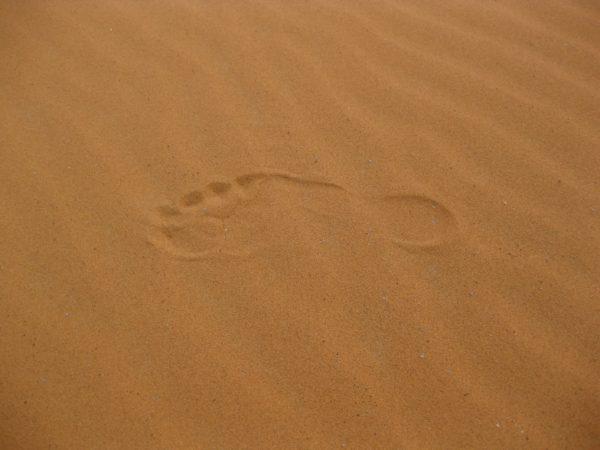 Footprint in the sand, sand, desert, footprint, foot, sand grains