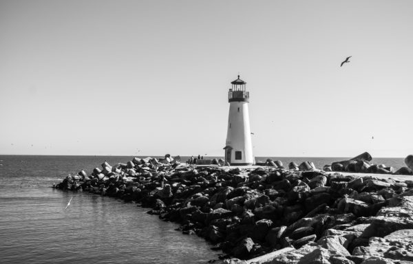 Old lighthouse in black and white, lighthouse, rocks, coast, lantern, black and white, seagulls, sea, beach