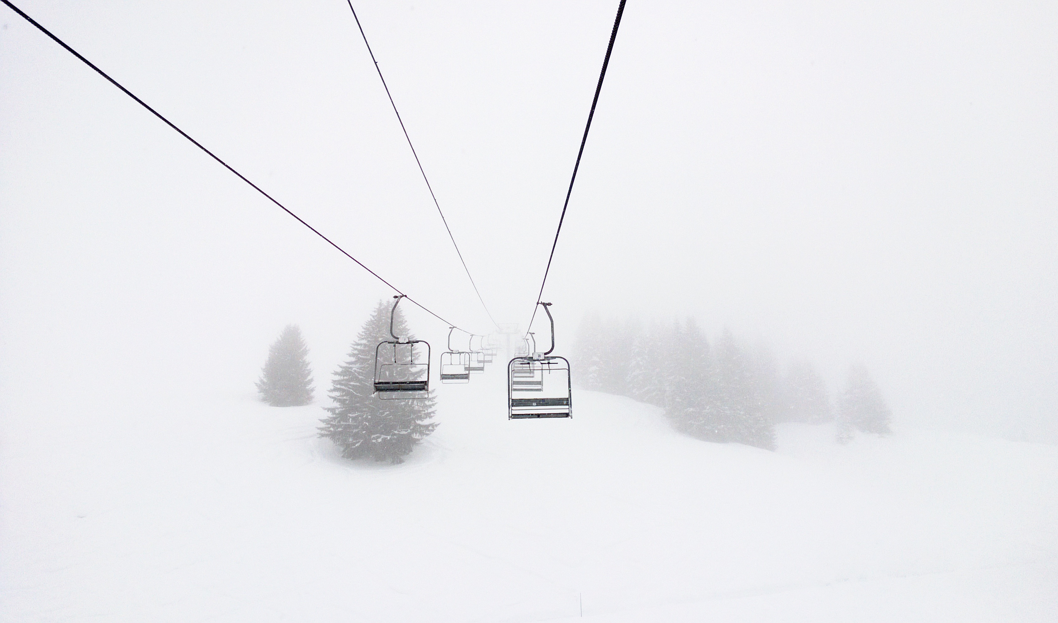 Chairlift, chair, snow, cold, fog, pine, mountain, cables, chair