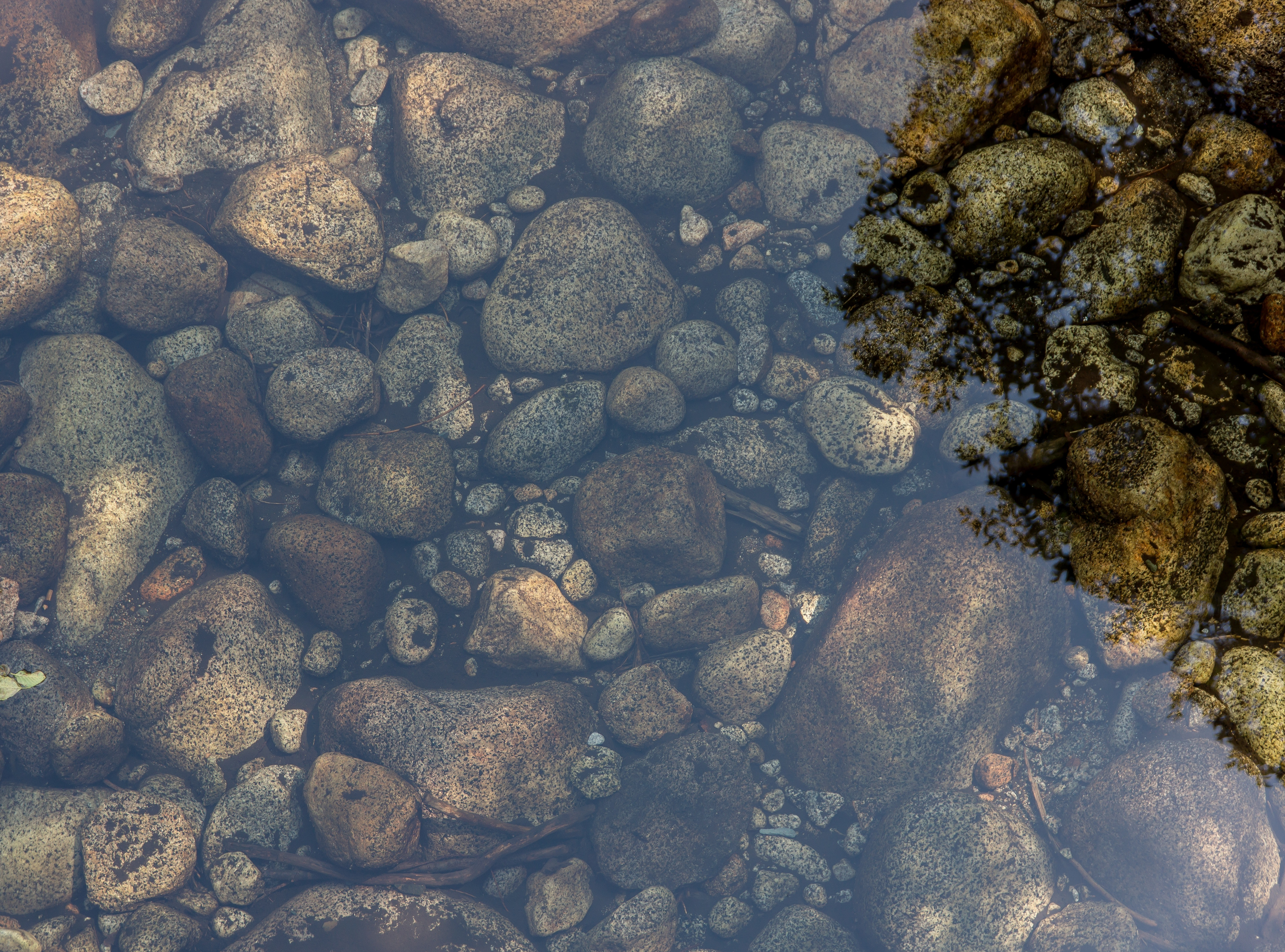 Crystal clear water and rocks, rocks, water, transparent, clean water, rocks, stones, lake