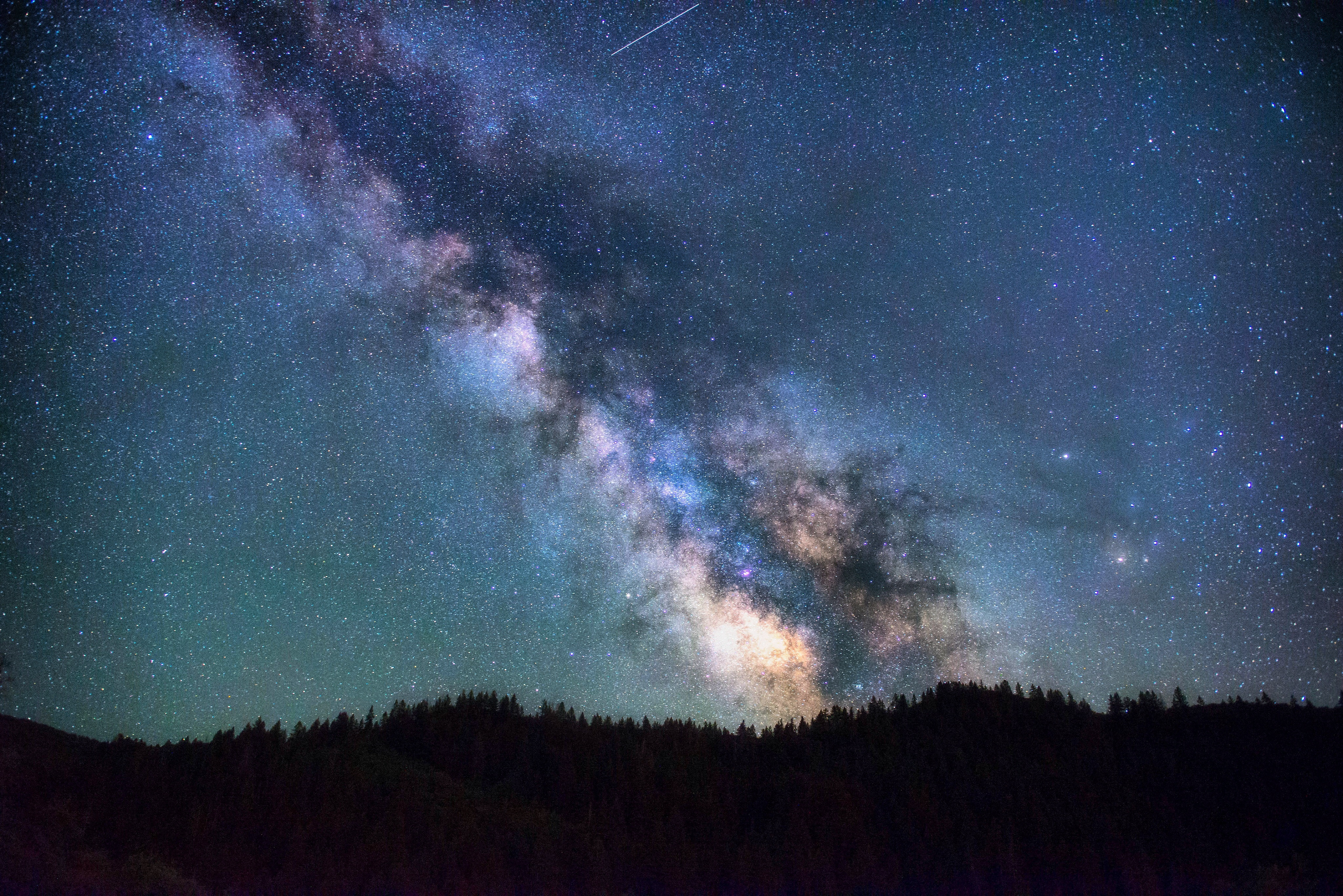 Amazing starry night in the forest, night, star, galaxy, trees, pines, mountains, starry, sky, night sky