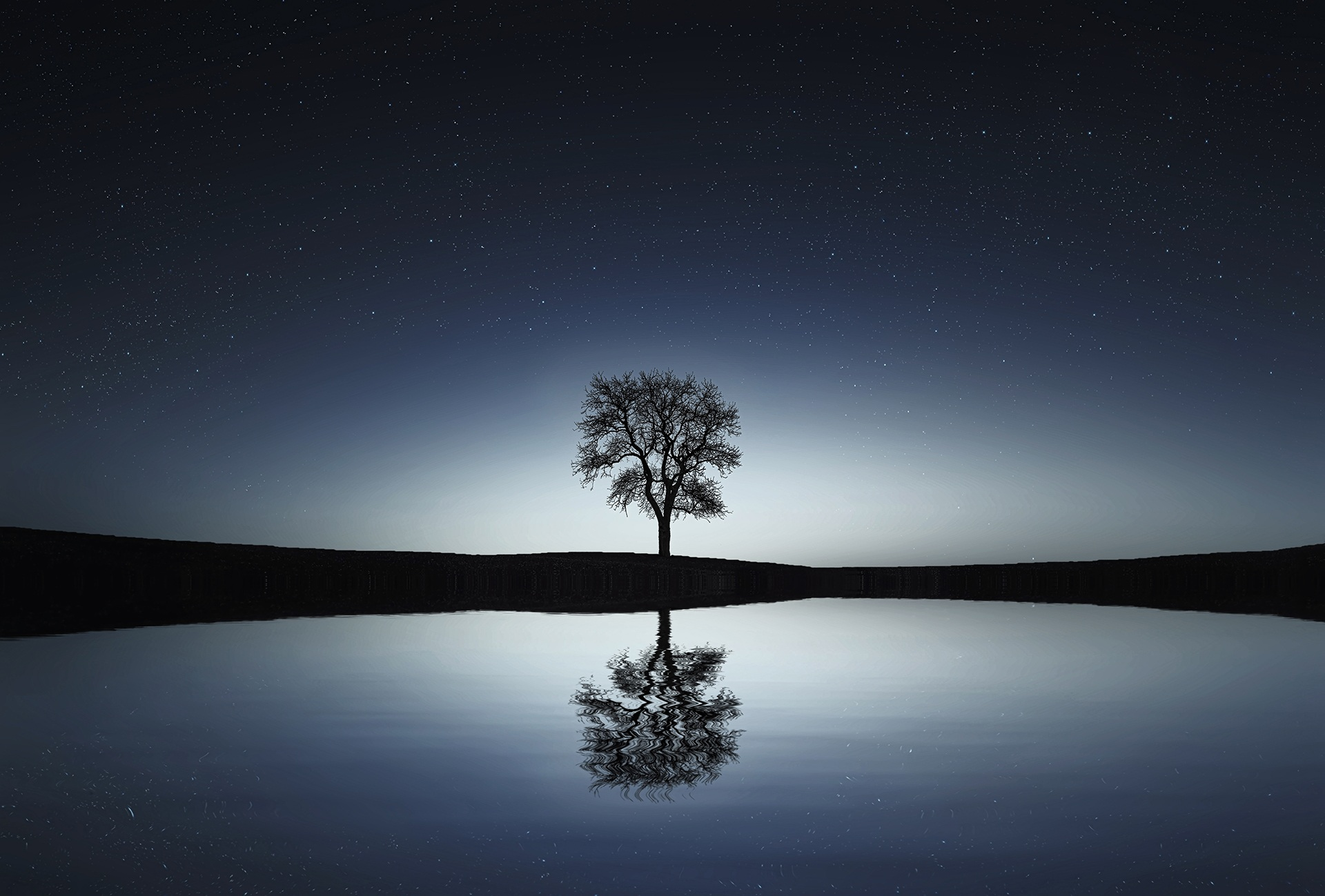 Lonely tree at night, lake, mirror, night, stars, reflection, sky, water, tree