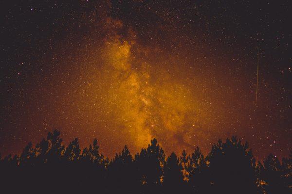 Milky Way golden, golden, stars, space, via lactea, trees, pines, silhouette, shadows