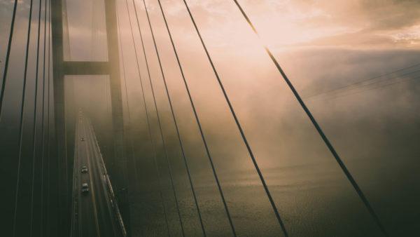 Suspension bridge, bridge, tensors, cables, road, fog